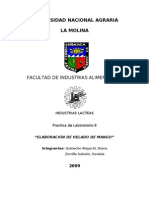 Informe 8 helado 2009-II