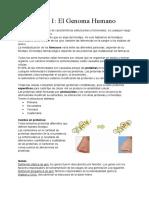 Tema 1 biologia genetica farmacia