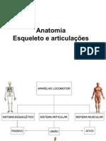 Anatomia Esqueleto e Articulacao 2021