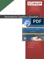 Neurociencia Cognitiva y Educacion