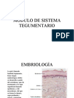 EmbriologiaTegumentario