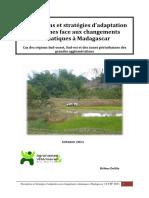 perceptions-et-strategies-d-adaptation-paysannes-face-aux-changements-climatiques-a-madagascar