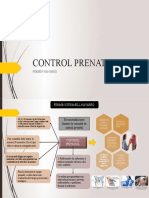 Control Prenatal Mapa Fermin