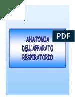 Apparato Respiratorio Patologie e Immagine