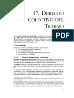 dt17-colectivo