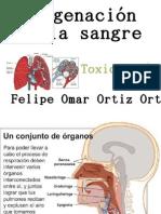 oxigenacion de la sangre