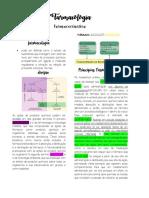 Farmacologia farmacocinetica