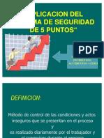 APICACION DEL SISTEMA DE SEGURIDAD DE 5 PUNTOS