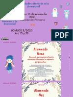 medidas-atenciocc81n-a-la-diversidad-primaria-lomloe-o150121 (1)
