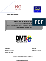 RAPPORT DE STAGE DMT CONSULTING