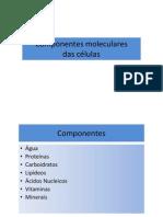 DNA_RNA_GA_Modo_de_Compatibilidade_