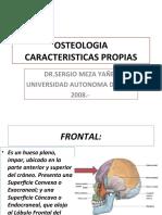 CLASE 05 OSTEOLOGIA CARACTERISTICAS (PPTshare)