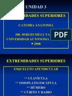 (2) CLASE 11  MIEMBROS SUPERIORES osteologia y artrología (P