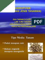 Media Dan Jenis Tanaman Hidroponik