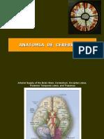 Anatomia cerebro 3 (PPTshare)