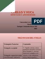 CUELLO APONEUROSIS Y MUSCULOS (PPTshare)