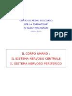 05_sistema_nervoso