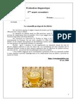 Evaluation Diagnostique La Camomille Protège Du Diabète