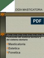 FISIOLOGÍA MASTICATORIA