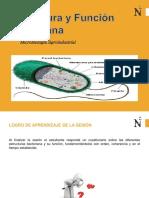 Sesion 3 - Estructura y funcion bacteriana
