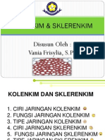 Bahan Ajar Kolenkim & Sklerenkim Vania F.,S.Pd