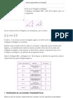 Razones trigonométricas en el triángulo rectángulo
