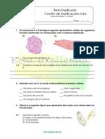 3.2  A célula unidade na constituição dos seres vivos - A Célula - Ficha de Trabalho (3)