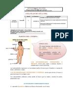 guiasdecienciasnaturales-gradoprimero-121014092230-phpapp01