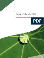 capgemini IT-Trends_2011