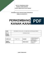 EDU 3102 Perkembangan Kanak-Kanak