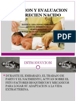 Atencion y Evaluacion Del Recien Nacido Gissss