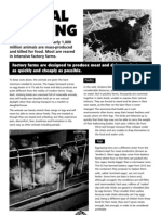 Animal Farming in the UK