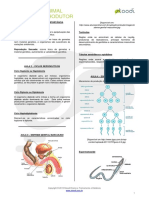 Biologia Sistema Reprodutor v01