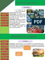Principios de Ecologia