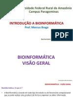Slide 03 - Introdução a Bioinformática - Bioinformática - Visão Geral - pt. 01