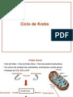 CiclodeKrebs_20170523080348