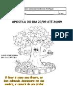 APOSTILA DO 4º ANO 20  ATE 24 DE AGOSTO