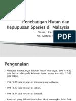 Penebangan Hutan dan Kepupusan Spesies di Malaysia