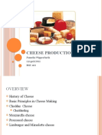 BSE 461 Cheese Production