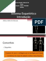 Sistema Esquelético - PDF (1)