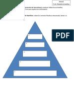 Anexo2 Pirámide de Hamilton