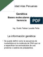 GENETICA - BASES MOLECULARES DE LA HERENCIA