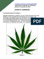 Culture du Cannabis - Problemes, Carence, Exces