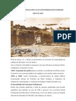 Desenvolvimento da Educação em Enfermagem no Brasil - Nicinha