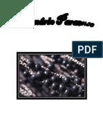Dicionário do Paraense