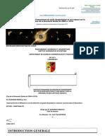 Memoire Online - Analyse Dynamique Du Besoin de Financement Du Cycle d'Exploitation Et Son Impact Sur La Rentabilité Des Capitaux Investis. Cas de La Brasserie Simba de 2006 à 2010 - Yan KASONGO MUHALA