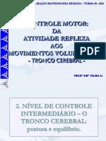 4 Smsomatico Especializacao 2013 Tronco e Cortex