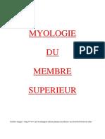 Myologie Du Membre Supérieur