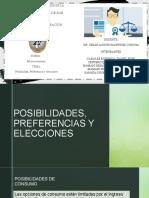 Posibilidades, Preferencias y Elecciones (2)