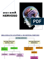 6. SNSensorial